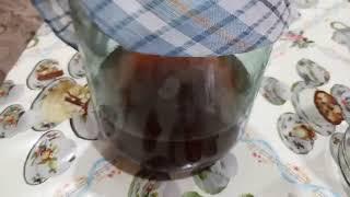 Чайный гриб с нуля. Рецепт!