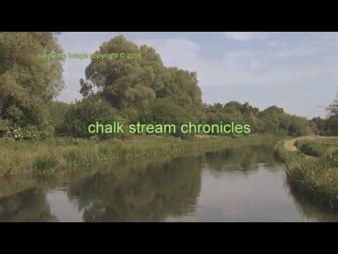 'Chalk Stream Chronicles' 'adventures with a fly rod'