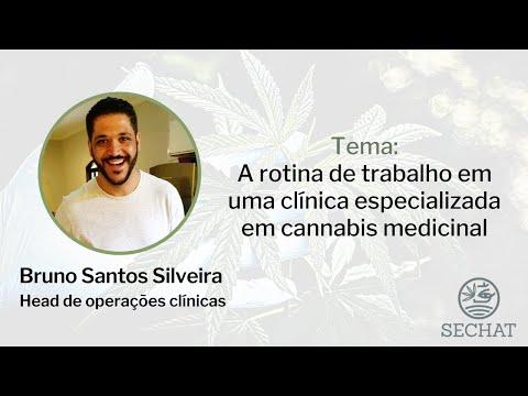 A rotina de trabalho em uma clínica especializada em cannabis medicinal