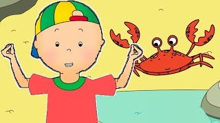 Funny Animated cartoons Kids | 🦀 Caillou Crab Rave  🦀 | WATCH ONLINE | Cartoons for Children
