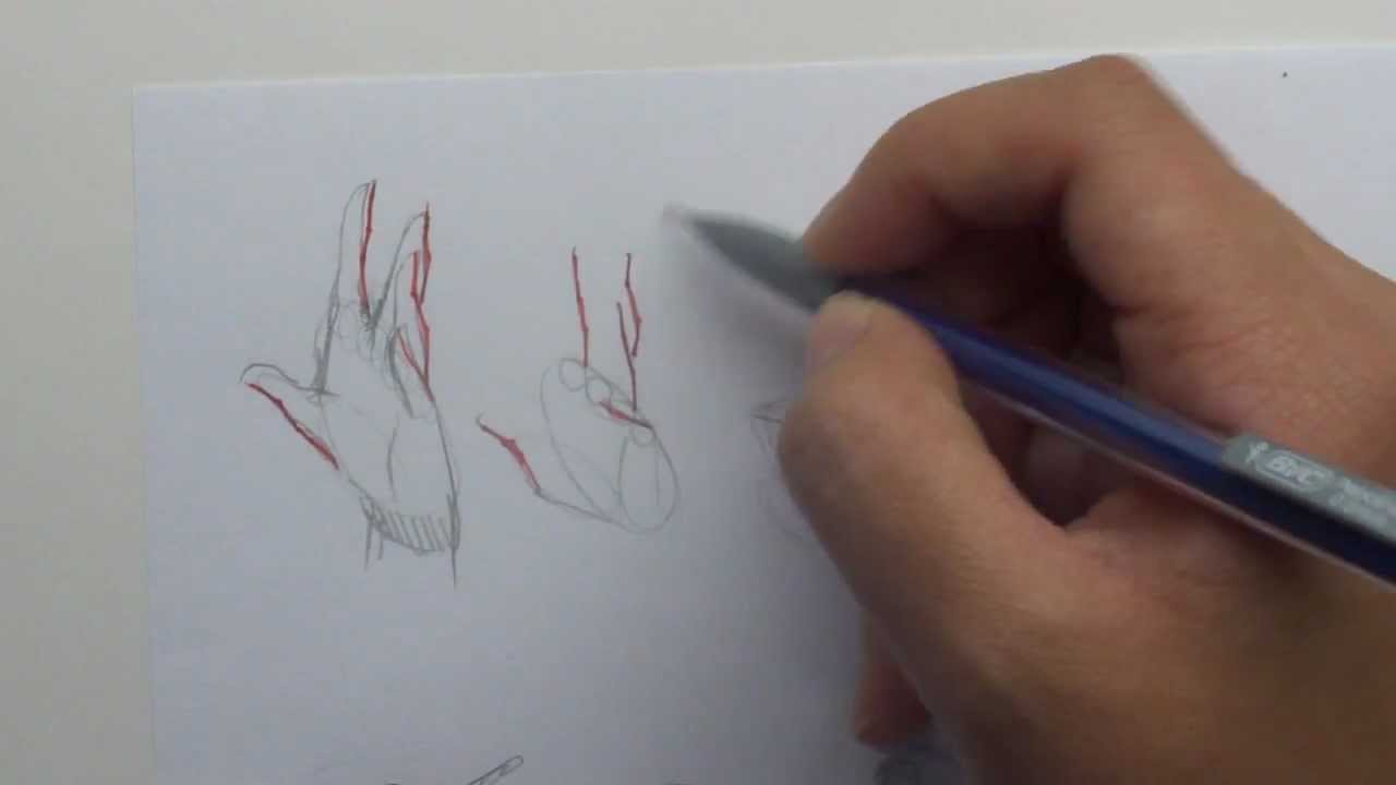 How To Draw Manga Hands Youtube