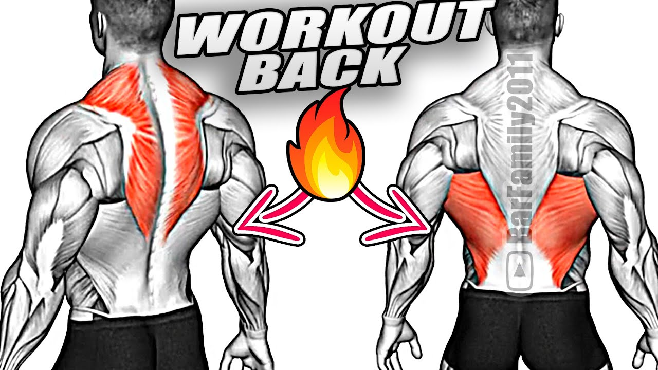 How to Build your V-Taper Back and Wide Lats (11 Effective Exercises)