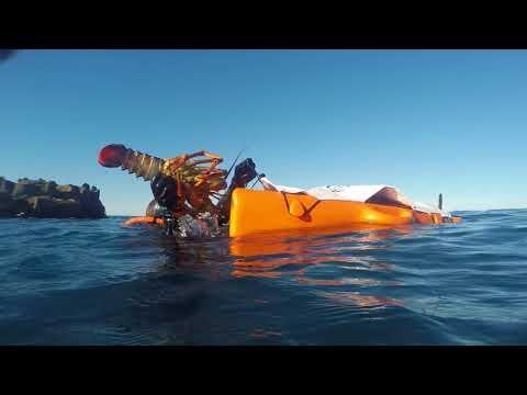 Canterbury Spearfishing Supplies: Banks Peninsula Spearfishing
