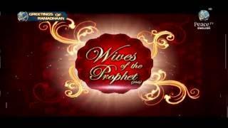 Video Wives of the Prophet Pbuh, Haitham Al Haddad, Part 2 download MP3, 3GP, MP4, WEBM, AVI, FLV Oktober 2018