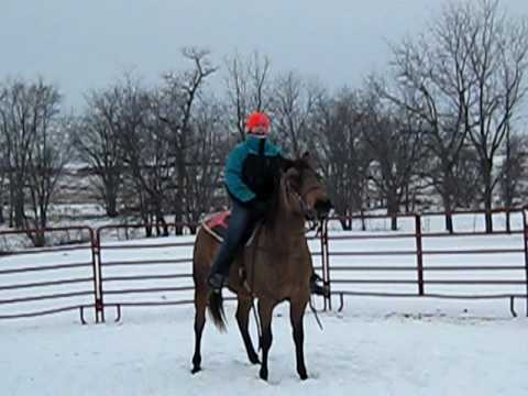 Breaking a Horse to Ride, First Time in the Saddle!