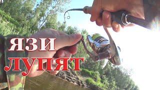 ПОД ЭТИМИ КУСТАМИ ПОЛНО РЫБЫ Язь жерех щука Рыбалка на спиннинг сплавом 2 ДНЯ НА РЕКЕ День 1