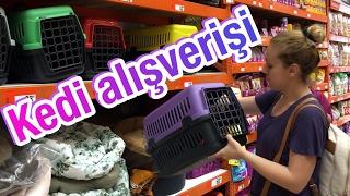 Kedimiz için alışveriş :) - Satın alma sahiplen