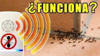 ¿Funcionan los anti-hormigas eléctricos?   Experimentos con Mike