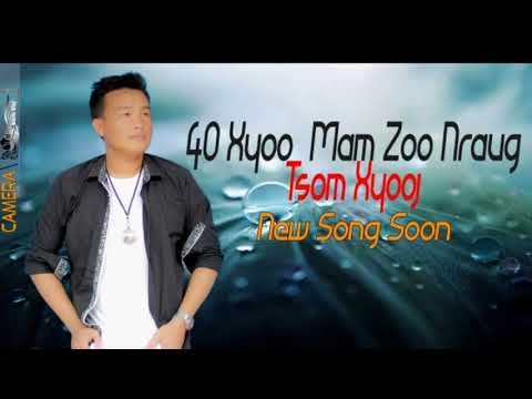 40 xyoo mam zoo nraug thumbnail