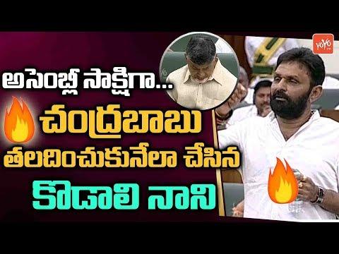 Kodali Nani Speech About YSR And Chandrababu In AP Assembly | YS Jagan | YSRCP | YOYO TV Channel