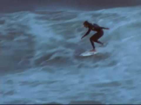 Frazzled  -Surfing Harp