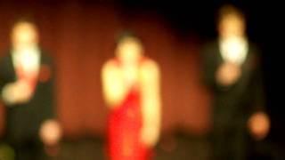 俄亥俄大学2010春节联欢晚会之:开幕