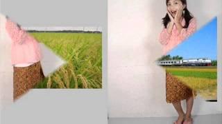 "lagu anak-anak terbaru by mila eo"" desaku"" by Ajeng"
