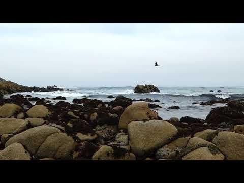 4K Relaxing video of Pacific Grove California beach Ocean waves