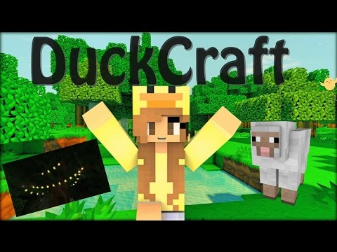 Fairy Lights & Farming!   DuckCraft   Ep. 6