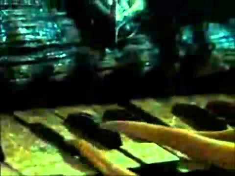 Davy Jones plays his Organ Theme.flv