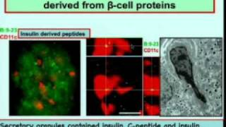 Part 2 - 13th Annual Autoimmunity Day_Johns Hopkins University
