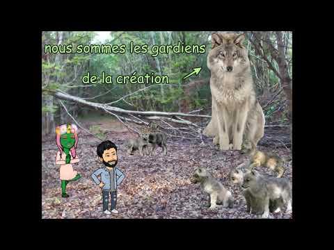 animal totem le loup