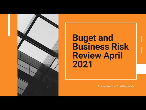 Budget and Business Risk Review April 2021