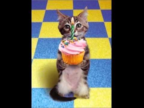 filmik na urodziny online dating