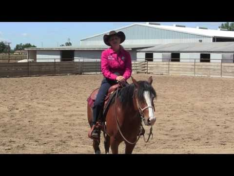 Jenny SherboSchooling the Reining Horse Part One