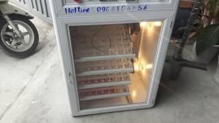 Máy ấp trứng sản xuất ở đâu 0963864756