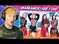 RAPPER REACTS to MAMAMOO for the FIRST TIME! 'HIP' REACTION