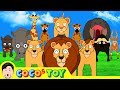 [29min] Dad! I am going to be another Lion king! 1~3ㅣanimals cartoon for childrenㅣCoCosToy