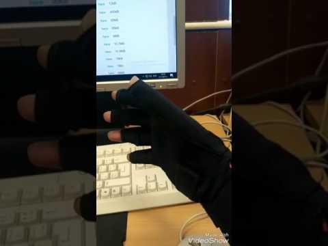 5DT data glove