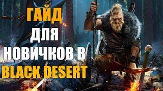 ГАЙД ДЛЯ НОВИЧКОВ В Black Desert Online