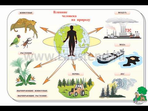 Влияние человека на  природу