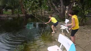 Рибалка у В'єтнамі