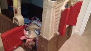twins fall asleep in their playhouse
