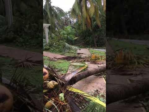 Sol Palmeras, Further footage of bungalow area, Varadero, Cuba