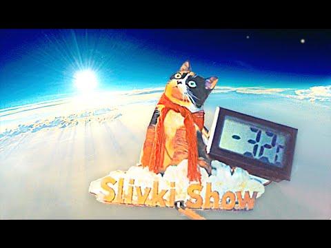 CAT IN SPACE