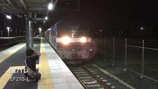 8月21日 夜の東海道線貨物列車3本! 3070レEF65-2101 遅71レEF210-1 遅5090レEF66-126+ムドDD51-1804