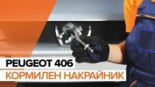 Самостоятелен ремонт на PEUGEOT 406 - видео уроци за автомобил