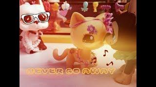 Lps клип : C-BooL -Never Go Away