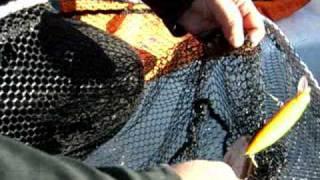 Terkos gölü Turna Balığı avı