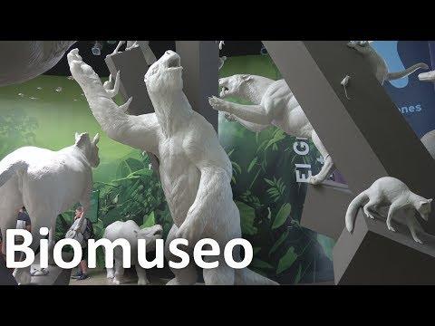 BIOMUSEO - PANAMÁ.  ¿Que ver y hacer? (4K-UHD)