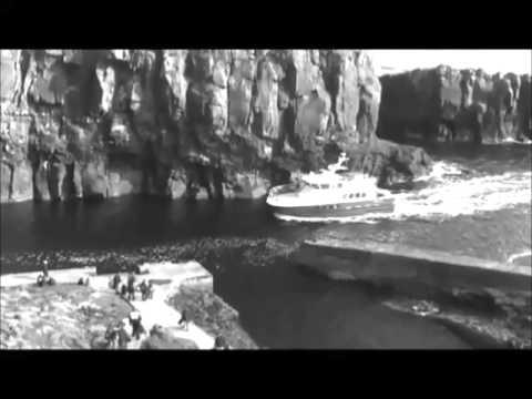 Karabakunya Dallarının Altında Tibyan'ı Beklerken - Wattpad - Tanıtım Videosu