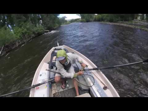 Fly Fishing Gunnison River - Almont, CO