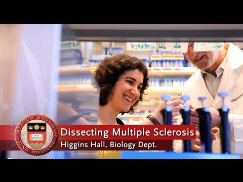 Goldwater Scholar Maria Asdourian '15: Dissecting Multiple Sclerosis