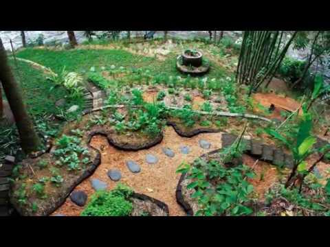 Garden Design Ideas  Permaculture Garden Design Examples