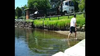 (team Oty) How To Catch Live Bait In A Home Made Fish Trap