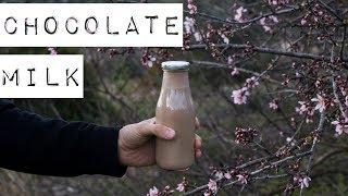 Шоколадное молоко 🌱полезное растительное молоко из конопли