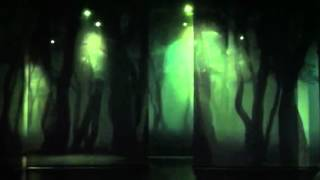 소나무숲 롤스크린