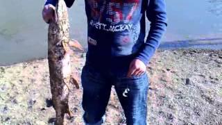 Рыбалка на реке Нура, Шлюз за  Косщами 2008 г.(, 2015-11-30T16:40:28.000Z)