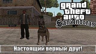 Обзор модов GTA San Andreas - Собака