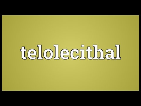 Header of telolecithal